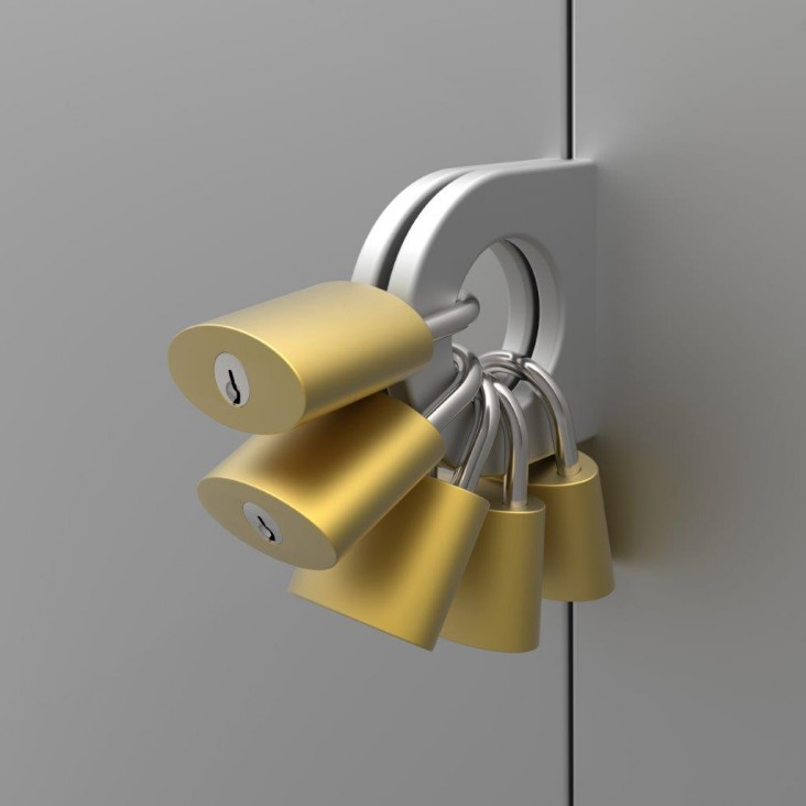 multiple locks image